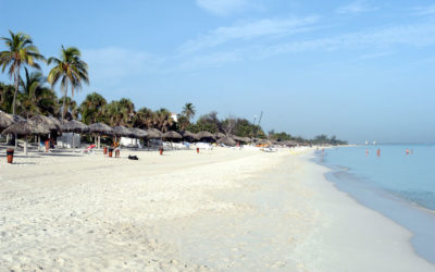Cuba – Varadero – Palma Real Gran Caribe