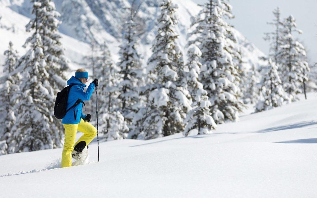 Trentino – Moena (TN)