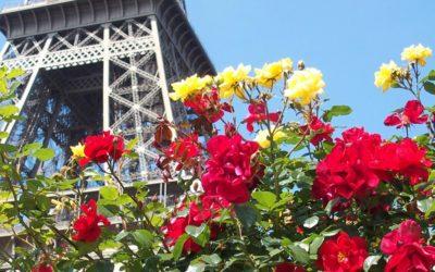 Pasqua a Parigi 10 – 13 Aprile 2020